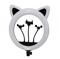 Кольцевая Ring Light CAT RK-45 (11329)