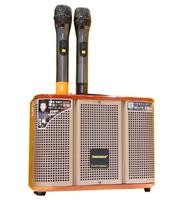 Акустическая музыкальная колонка Temeisheng GD06-39 с микрофонами(11663)