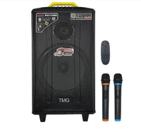 Колонка акумуляторная Temeisheng QX-1214 комбоусилитель акустика USB/FM/Bluetooth(11666)