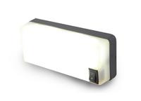 Подсветка диодная салона с выключателем (107,6х45,6) 12/24V/LWD 658/1754