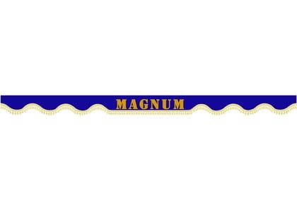Шторкa на лобовое+боковое стекла Renault Magnum цвет синий/1870